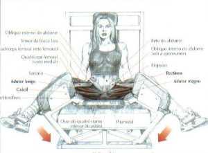 Cadeira Adutora Exemplo de Treino de Pernas Completo para Iniciantes