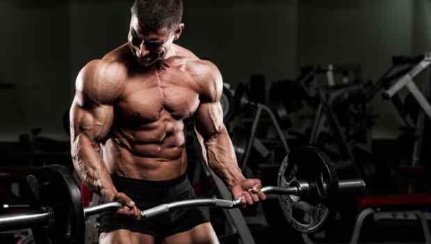 A importância da periodização na musculação